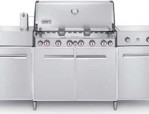 Weber Summit Grill Center Stainless Steel